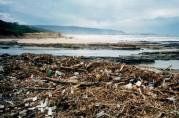 Illawarra floods 1998