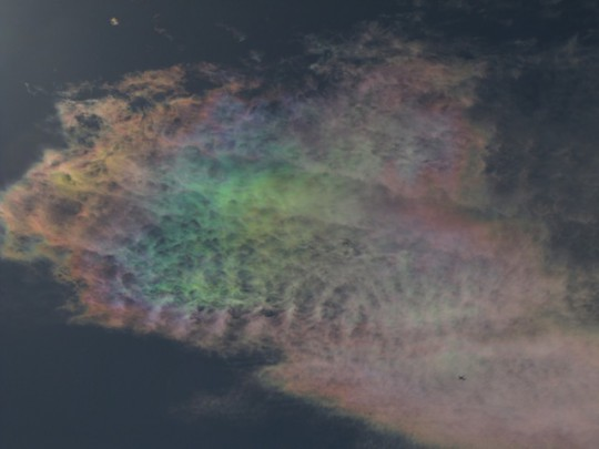 Cirrus clouds that are iridescent or nacreous