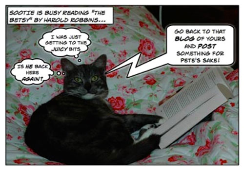 Sootie reading