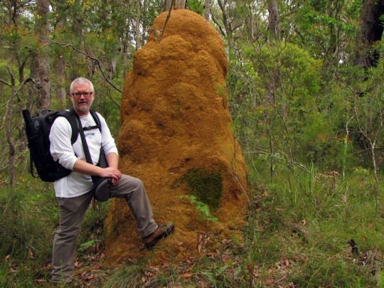 Darcy Moore by termite mound Budderoo National Park