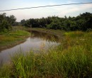 Countryside seen while riding through southern Johor, Malaysia
