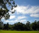 Roy Johanson Park Figtree