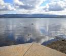 lake_illawarra_barrack_pt_01_ride_27