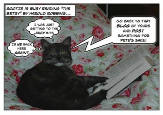 Sootie enjoys reading books