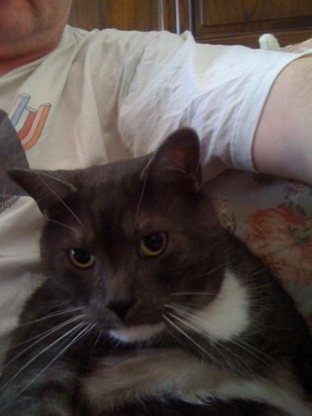 Sootie loves to sit alongside me