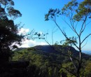 Looking east towards Mount Keira