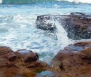 Rock Platform at Bulli Point