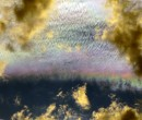 Iridescent clouds over the Illawarra